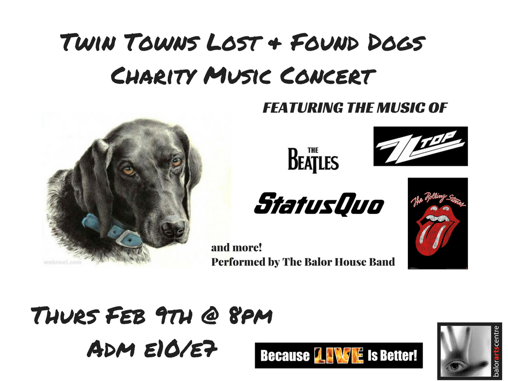 twin-towns-lost-found-dogscharity-music-concert-1
